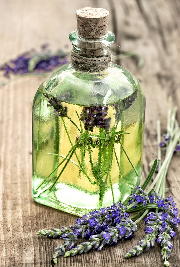 Lavender oil with fresh flowers. Healthy herbs